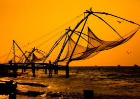 How to Explore Kochi Like a Local