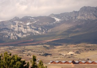 Five Must-Visit Wine Destinations in Spain