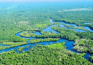 The amazing Amazon Rainforest experience!