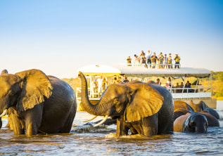 Safaris, River cruises and more: Botswana a Nature Lover's paradise!