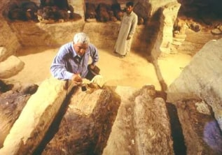 Can  DNA test the ancient mummies