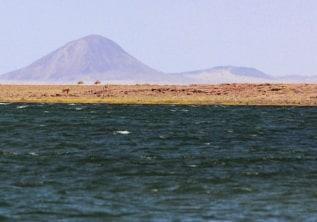 THE JADE SEA