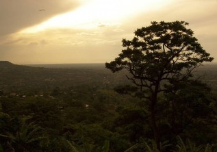 ATTRACTIONS IN NYUNGWE FOREST NATIONAL PARK