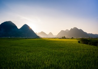 The Ultimate Vietnam bucket list: Rice paddies, floating markets, street food and so much more!