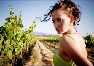 Wine Tours in Chile