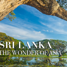 Best National Parks To Visit In Sri Lanka