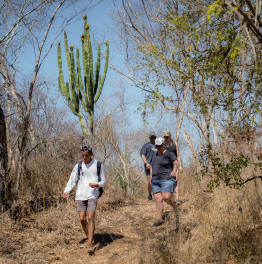 5-Hour Hike Blue Agave Trail from Mazatlan With Distillery Visit