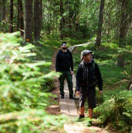 7-Hour Tour to Liesjärvi National Park from Helsinki