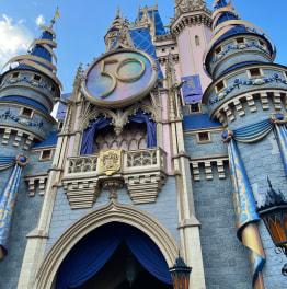 6-Hour Private Tour to Disney