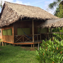 4-Days Jungle Expedition from Iquitos