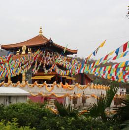 8-Hour Nanshan Buddhism Culture Park, Yazhou & Fishing Village Tour