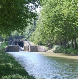 Bike Along the Canal du Midi
