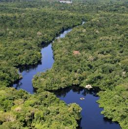 3-Day Safari At Pantanal Including Traditional Piranha Fishing