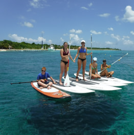 1- Hour Paddleboarding Tour Of Cozumel