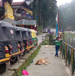 Feel close to nature in serene Himachal Pradesh