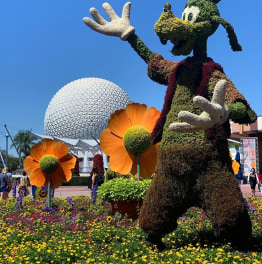 6-Hour Tour of Epcot Theme Park