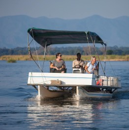 Discover Your Love for Wildlife in Zambia
