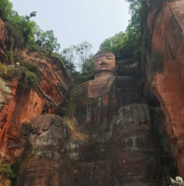 8-Hour Tour Of Chengdu & Leshan