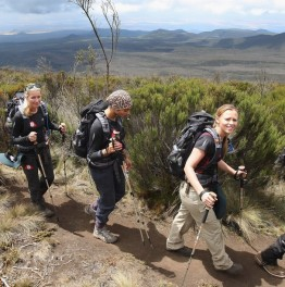 Climb Up the Lemosho Route for Uhuru Peak Summit