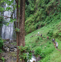 Cherish the Materuni Waterfalls & Coffee Tour