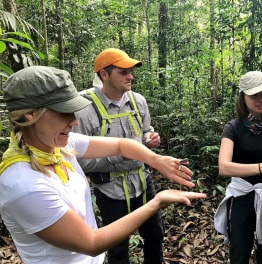 4 Day Tour Of The Tamshiyacu - Tahuayo Reserve From Iquitos