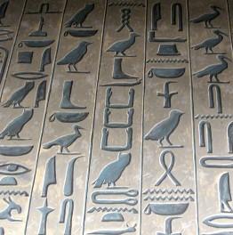 Go on a day trip around Egypt