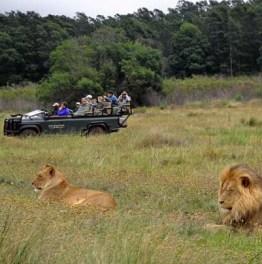 Encounter Wildlife on Land & Water