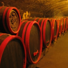 Taste the best of Hungarian Wines!