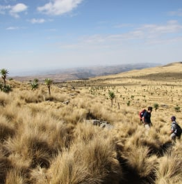 Try Eco-Trek in Amhara Region of Ethiopia