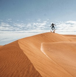 Full-Day National Reserves & Sand Dunes Tour In Lima, Paracas & Huacachina