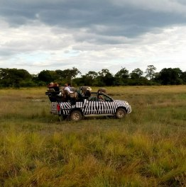 Set Off on Authentic African Safari