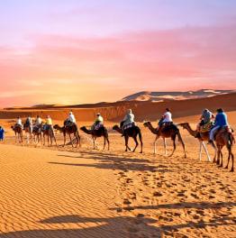 3-day Marrakech & Fez desert tour