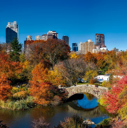 Unveil the Secrets of Central Park