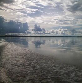 Plan an Excursion to the Amazonia!
