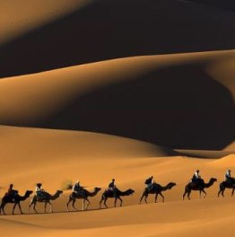 3-Day Morocco Desert Tour from Marrakech to Fes