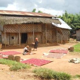 Kalaw Villages 2-Day Trekking Tour