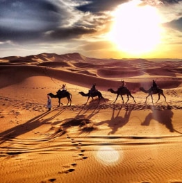 Cherish Your Time in the Sahara