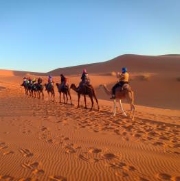 Combine Culture, Desert Adventures, & Seaside Relaxation