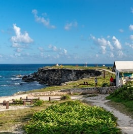 11-Hour Isla Contoy & Isla Mujeres Tour From Punta Sam