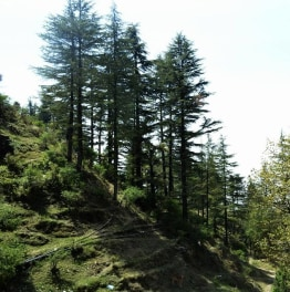 Trek to Nag Tibba Near Queen of Hills