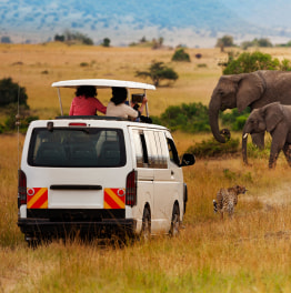 Fly to the Masai Region