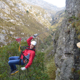 Cape Town Ziplining, Cheetah Encounter & Wine Tasting Day Tour