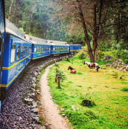 Board a luxurious train on you way to the ancient site