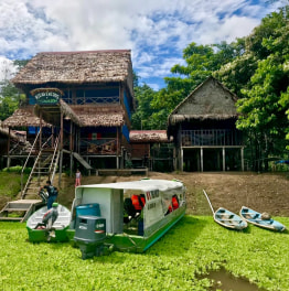 3 Day Tour of Tamshiyacu Tahuayo Reserve from Iquitos