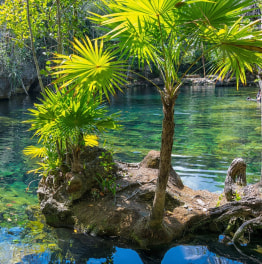 5-Hour Temazcal & Cenote Tour from Cancun
