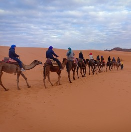 Set in Motion Your Desert Trip