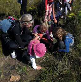 Embark on Youth Environmental Excursions