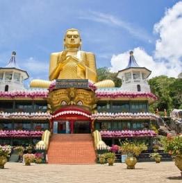7-Day Tour To Explore Sri Lanka