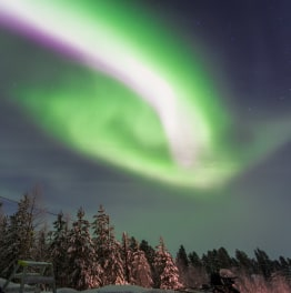 Ride a Dog sleigh into the Northern Lights