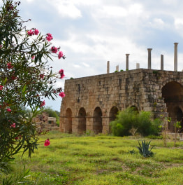 Full-Day Sidon, Tyre & Maghdouche Tour from Beirut